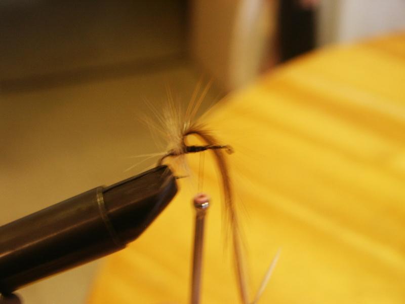 Pêche à la mouche ! - Page 3 Pict0036