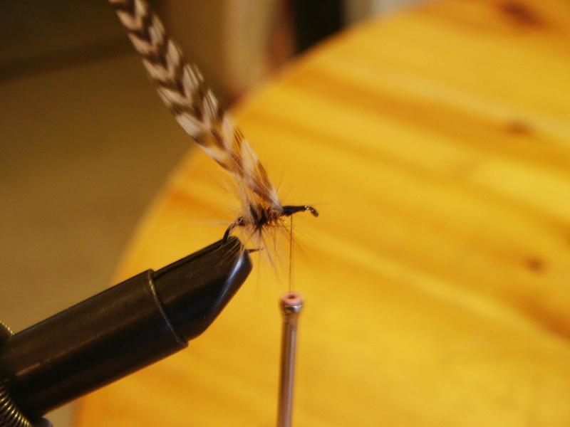 Pêche à la mouche ! - Page 3 Pict0037