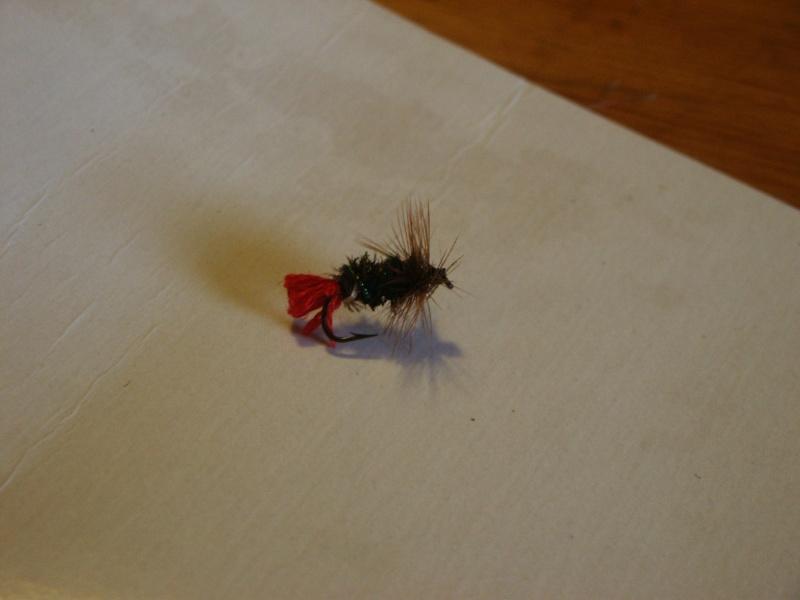 Pêche à la mouche ! - Page 3 Pict0046
