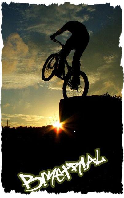 Trial Bike Large_11