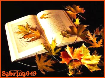"""Avatars """"L'automne est là"""" Photo_11"""