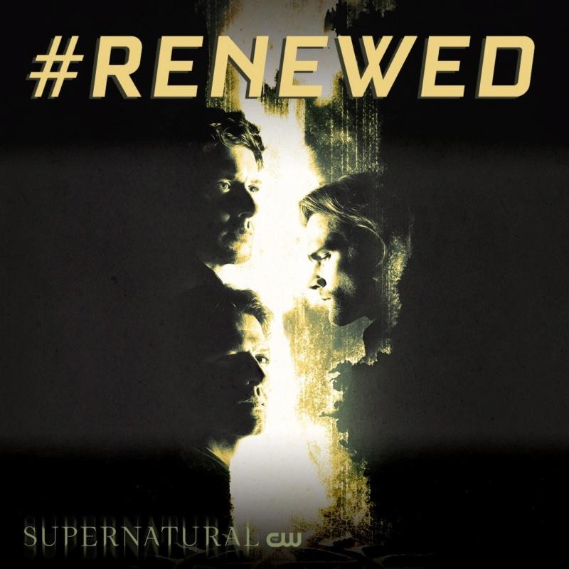 Supernatural est renouvelé pour une saison 15 Dyrzvp10