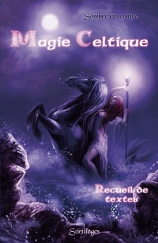Fiche de lecture du 27/11 au 03/12 Magie_11