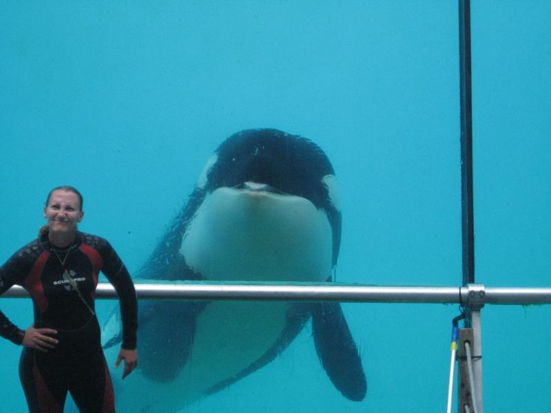 [Photos] Orques aux vitres Img_2410