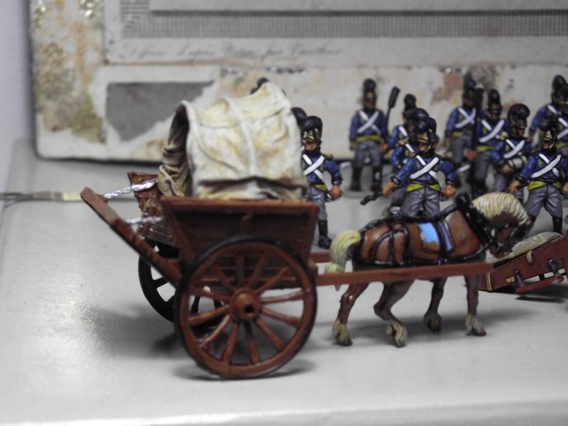 Charette de vivandière Dscf3817