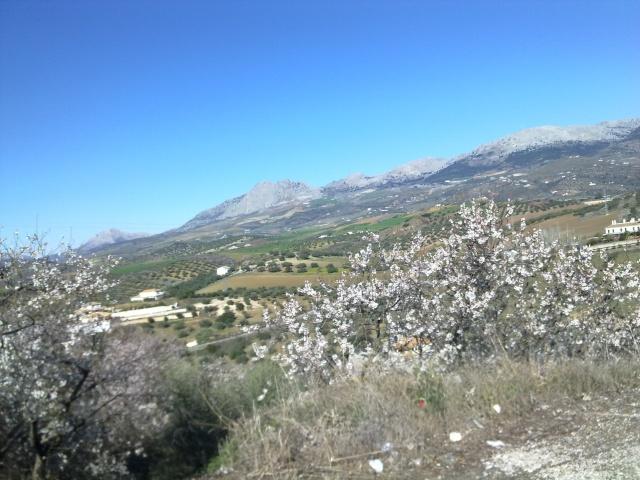 Malaga Colmenar por los montes de Malaga 29012018