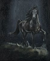 """Cavalo """"Friesian"""" ( ou Frisio ) 410"""