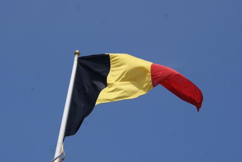 Monuments WW2 dédiés à la Brigade Piron. ( Normandie ) Dsc09919