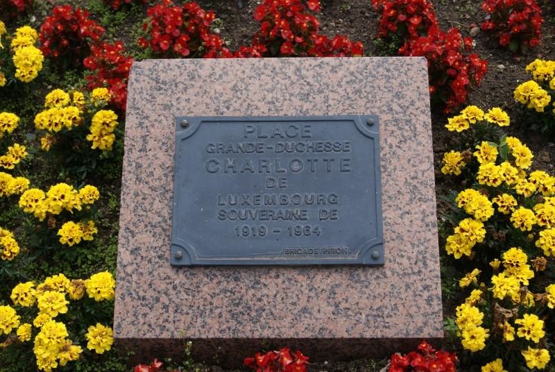 Monuments WW2 dédiés à la Brigade Piron. ( Normandie ) Dsc09932