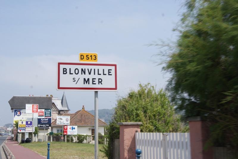 Monuments WW2 dédiés à la Brigade Piron. ( Normandie ) Dsc09934