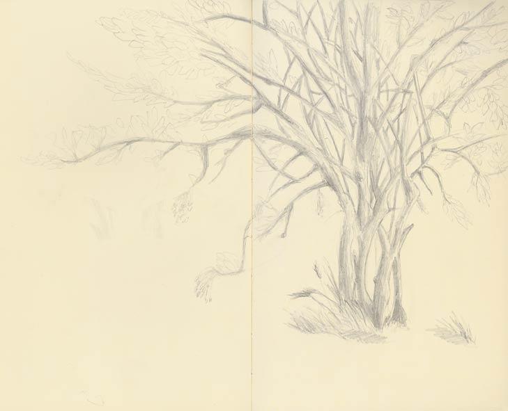 Mes dessins ! - Page 3 11082714