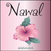Nawal Nawal11