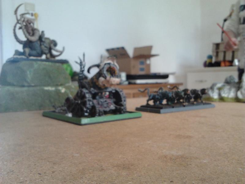 Rapport de bataille: Guerrier du chaos de Nurgle VS Hauts-elfes (pitoyables) 2012-063