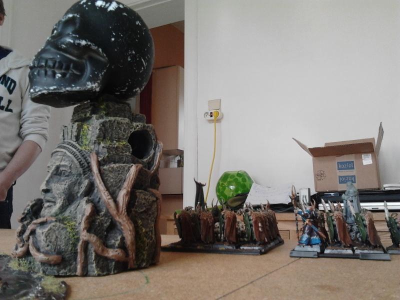 Rapport de bataille: Guerrier du chaos de Nurgle VS Hauts-elfes (pitoyables) 2012-065