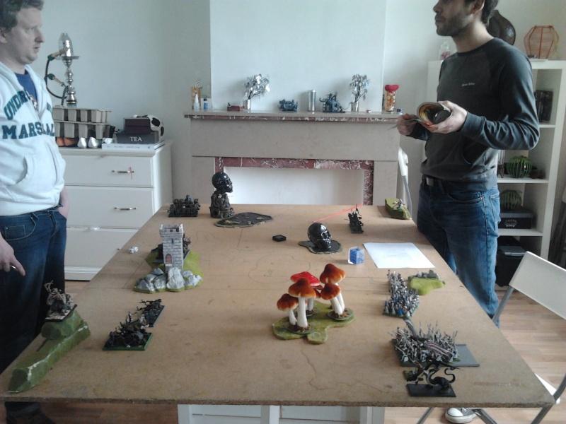 Rapport de bataille: Guerrier du chaos de Nurgle VS Hauts-elfes (pitoyables) 2012-069