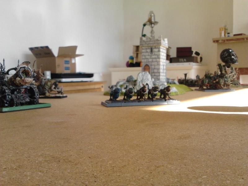 Rapport de bataille: Guerrier du chaos de Nurgle VS Hauts-elfes (pitoyables) 2012-071