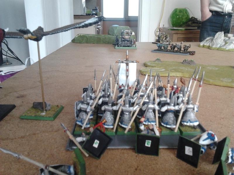 Rapport de bataille: Guerrier du chaos de Nurgle VS Hauts-elfes (pitoyables) 2012-072