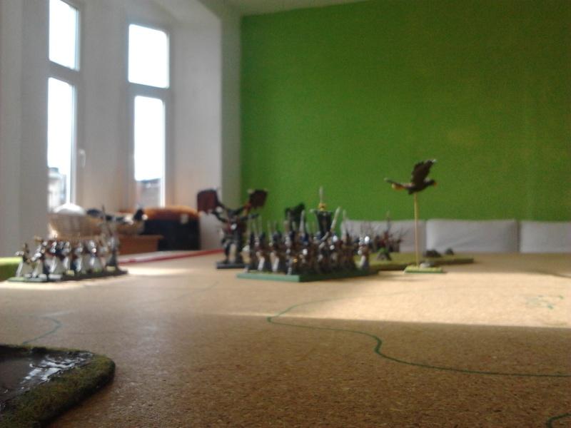 Rapport de bataille: Guerrier du chaos de Nurgle VS Hauts-elfes (pitoyables) 2012-073