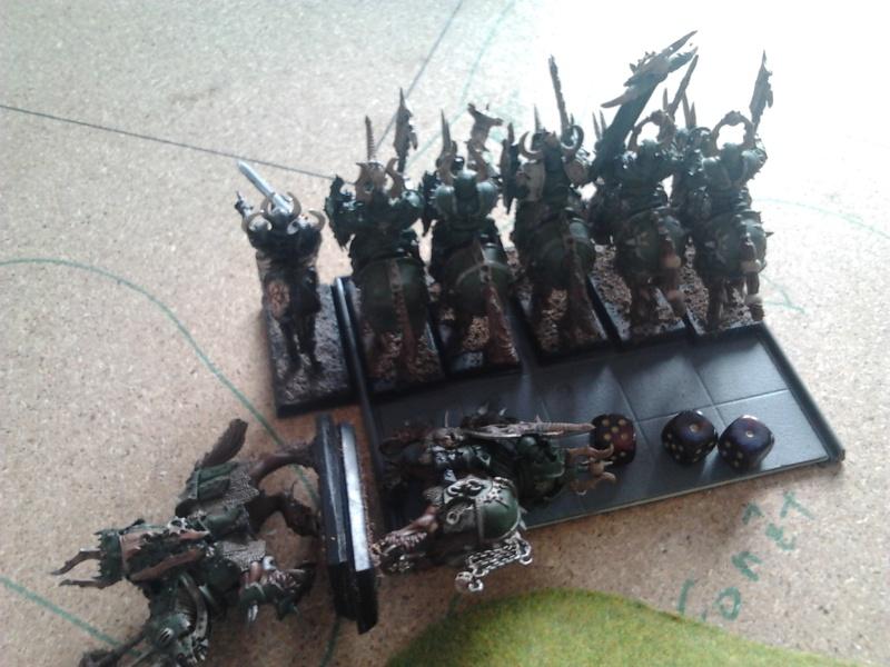 Rapport de bataille: Guerrier du chaos de Nurgle VS Hauts-elfes (pitoyables) 2012-075