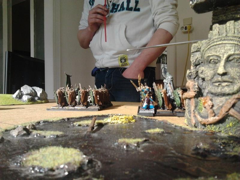Rapport de bataille: Guerrier du chaos de Nurgle VS Hauts-elfes (pitoyables) 2012-077