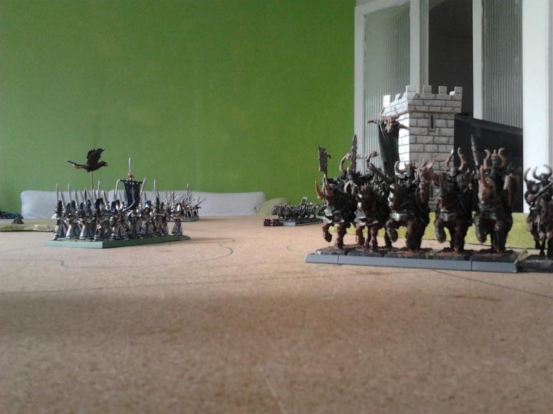 Rapport de bataille: Guerrier du chaos de Nurgle VS Hauts-elfes (pitoyables) 2012-080