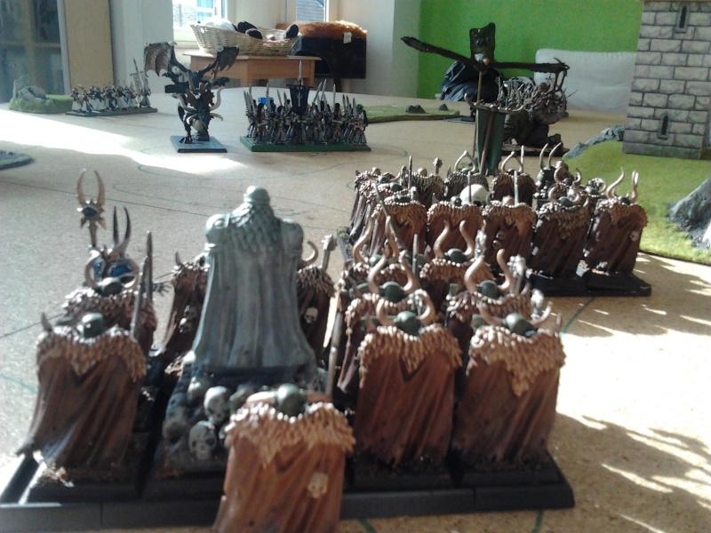 Rapport de bataille: Guerrier du chaos de Nurgle VS Hauts-elfes (pitoyables) 2012-081