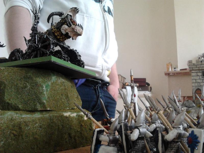 Rapport de bataille: Guerrier du chaos de Nurgle VS Hauts-elfes (pitoyables) 2012-084