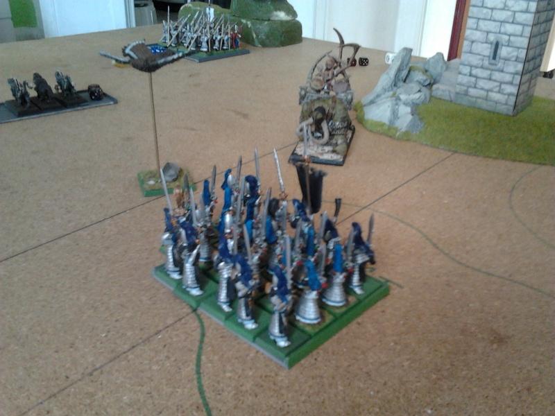 Rapport de bataille: Guerrier du chaos de Nurgle VS Hauts-elfes (pitoyables) 2012-086