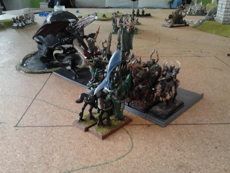 Rapport de bataille: Guerrier du chaos de Nurgle VS Hauts-elfes (pitoyables) 2012-087