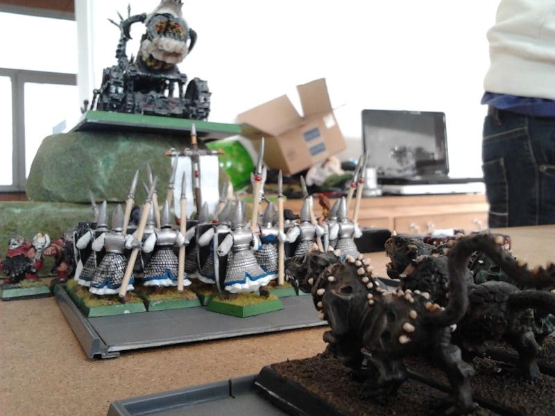 Rapport de bataille: Guerrier du chaos de Nurgle VS Hauts-elfes (pitoyables) 2012-088