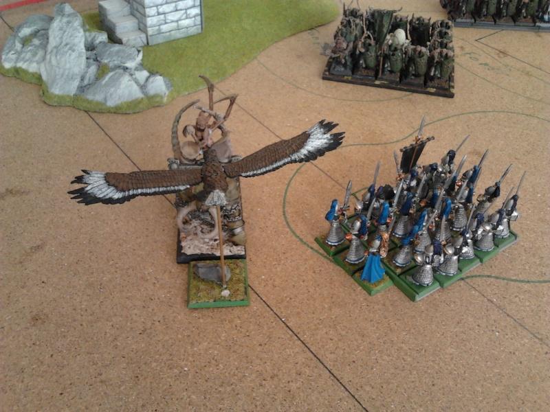 Rapport de bataille: Guerrier du chaos de Nurgle VS Hauts-elfes (pitoyables) 2012-089