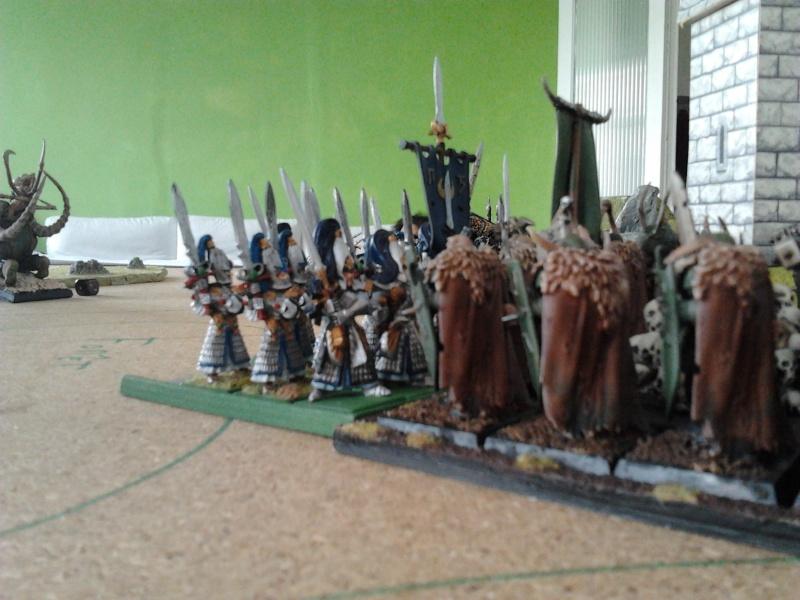Rapport de bataille: Guerrier du chaos de Nurgle VS Hauts-elfes (pitoyables) 2012-094