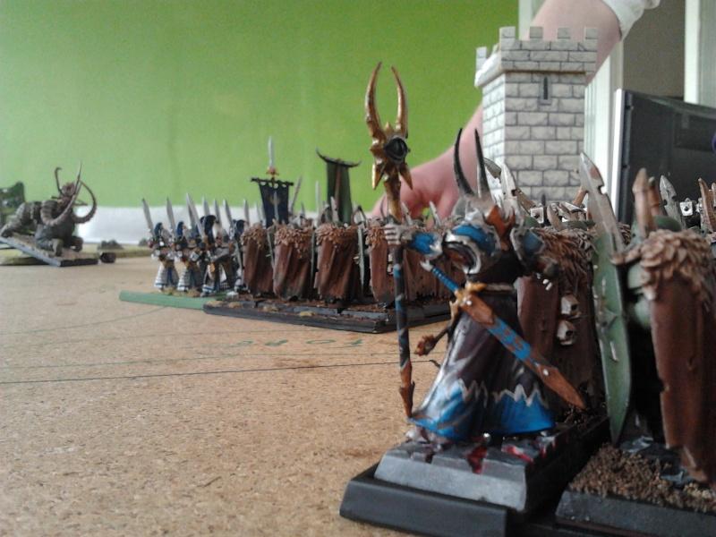 Rapport de bataille: Guerrier du chaos de Nurgle VS Hauts-elfes (pitoyables) 2012-095