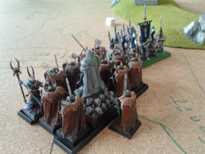 Rapport de bataille: Guerrier du chaos de Nurgle VS Hauts-elfes (pitoyables) 2012-096