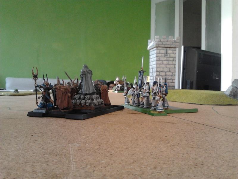 Rapport de bataille: Guerrier du chaos de Nurgle VS Hauts-elfes (pitoyables) - Page 2 2012-099