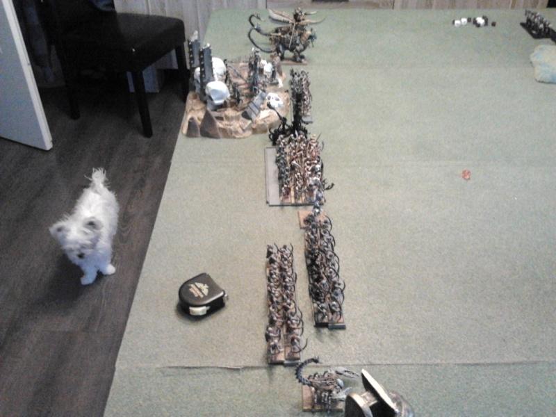 Rapport de bataille: Guerriers du chaos vs Rois des tombes 2012-115