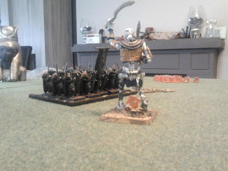 Rapport de bataille: Guerriers du chaos vs Rois des tombes 2012-156