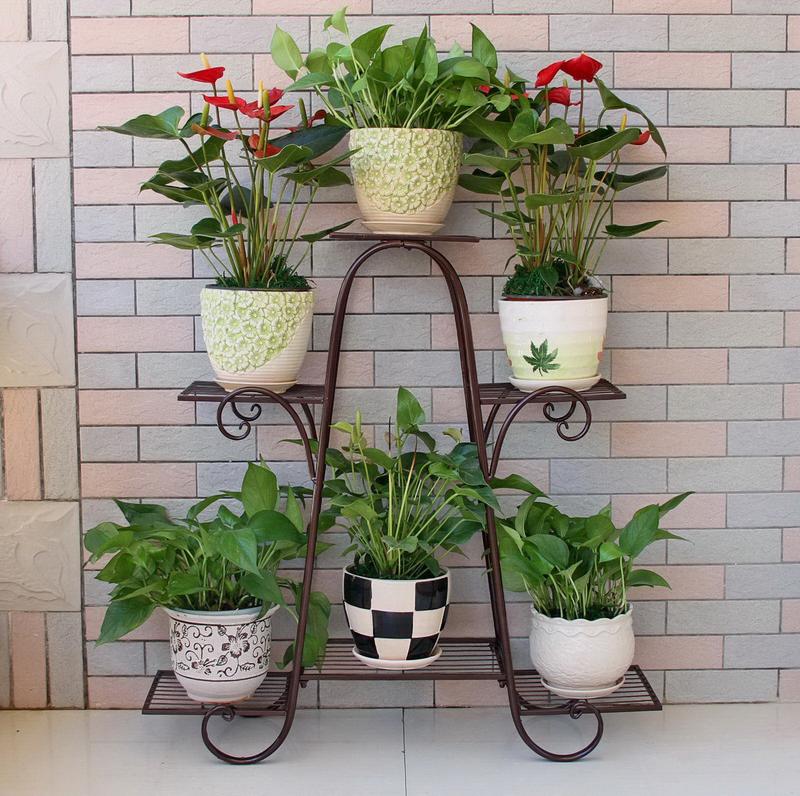طريقة العناية بالنباتات المنزلية 99999914