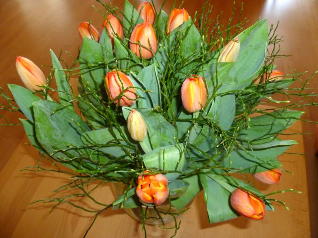 Glücksmomente - Seite 15 Tulpen10