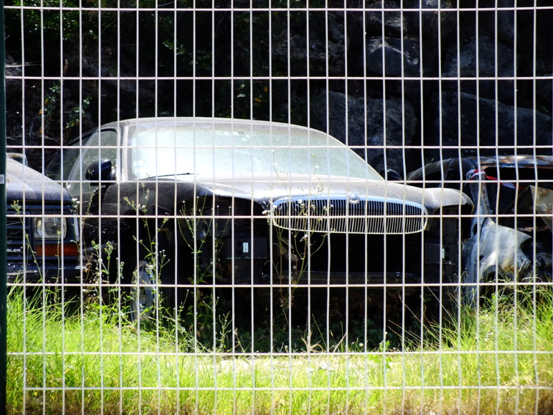 les derniers soupirs en France Dscf4021