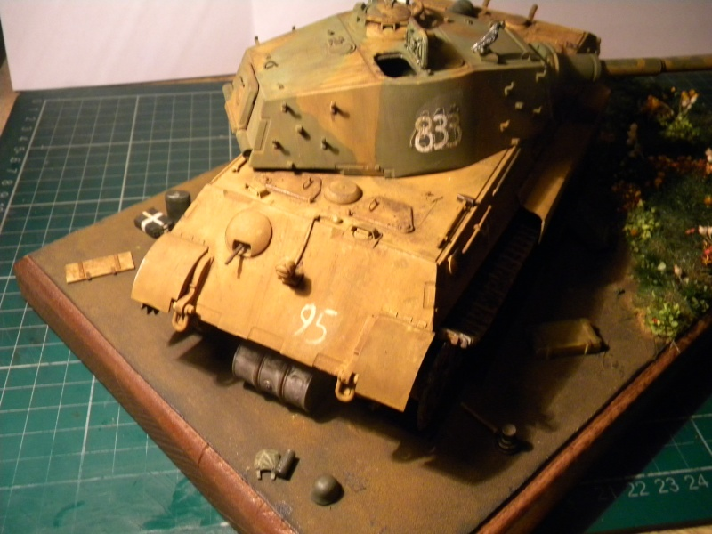 Tigre II,le dio. - Page 2 Tigre223