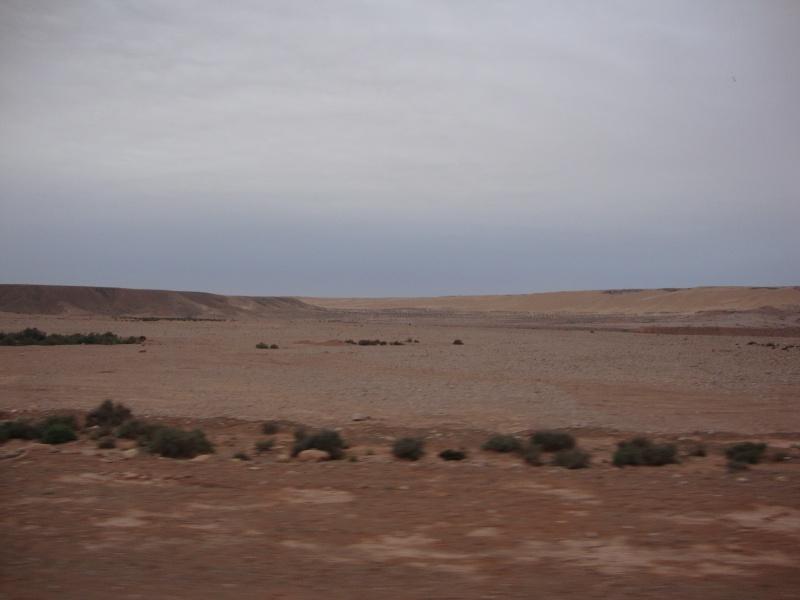 retour maroc 2012 - Page 4 Dsc03214