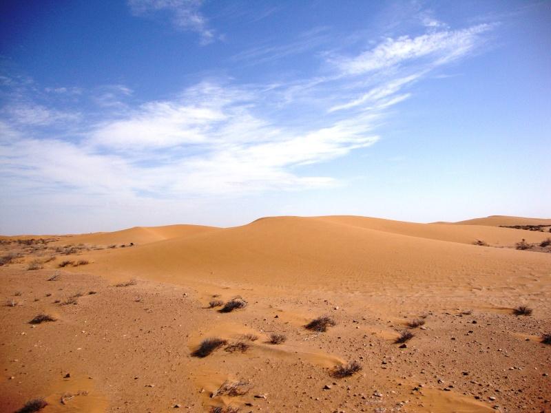 retour maroc 2012 - Page 4 Dsc03317