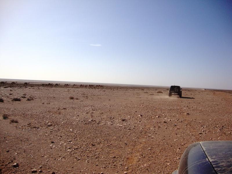 retour maroc 2012 - Page 4 Dsc03320