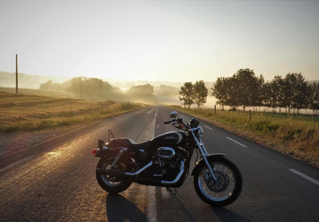 Harley .....Electrichead Dsc01536