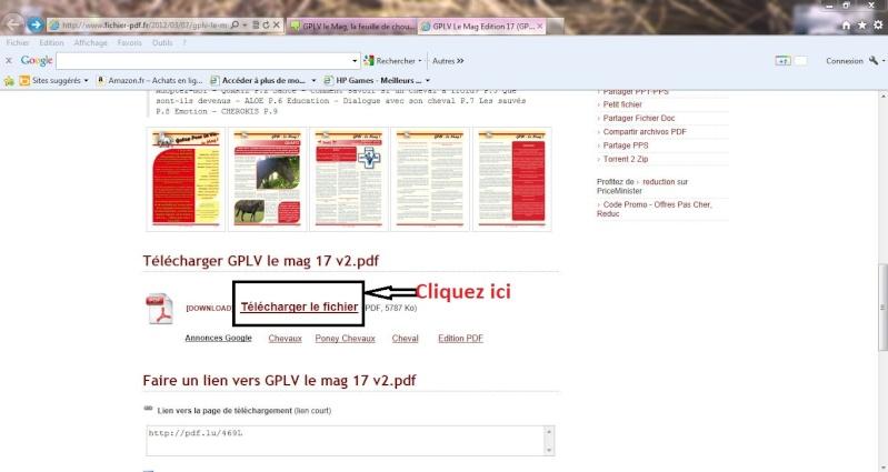 GPLV le Mag, la feuille de chou 17 vient de sortir Captur12