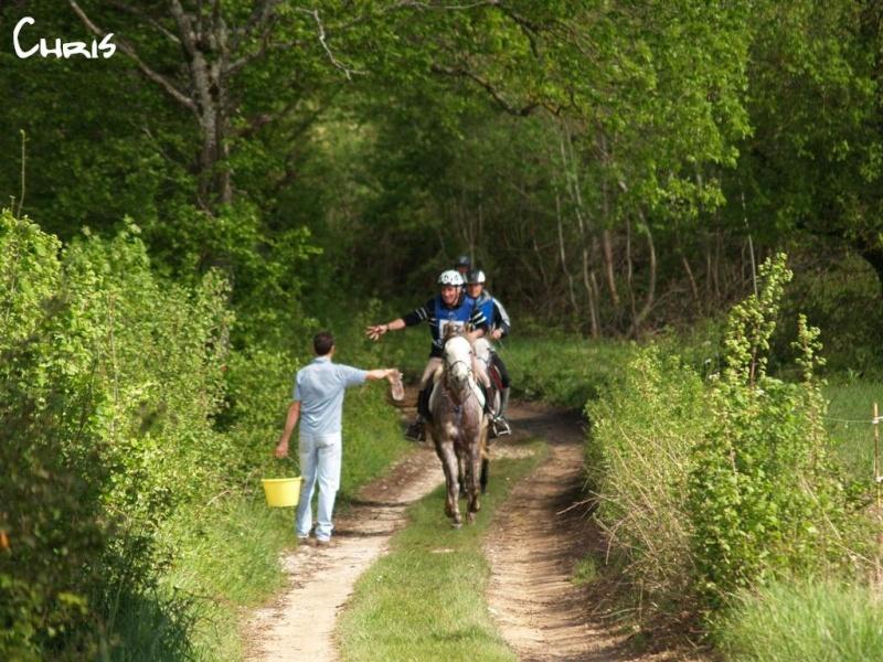 endurance a courtenay P4295110