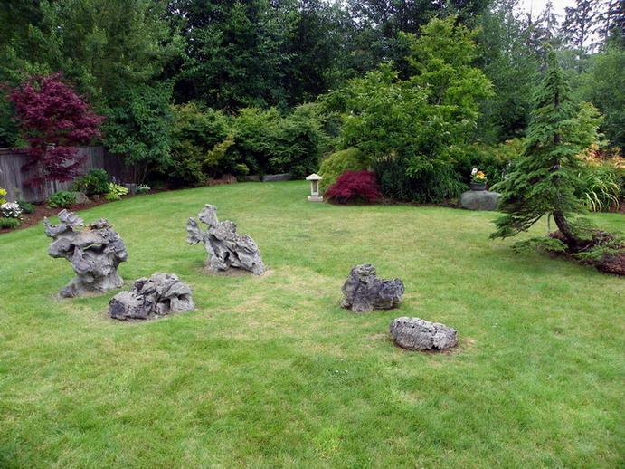 Peter Wilson's Garden Peter_15