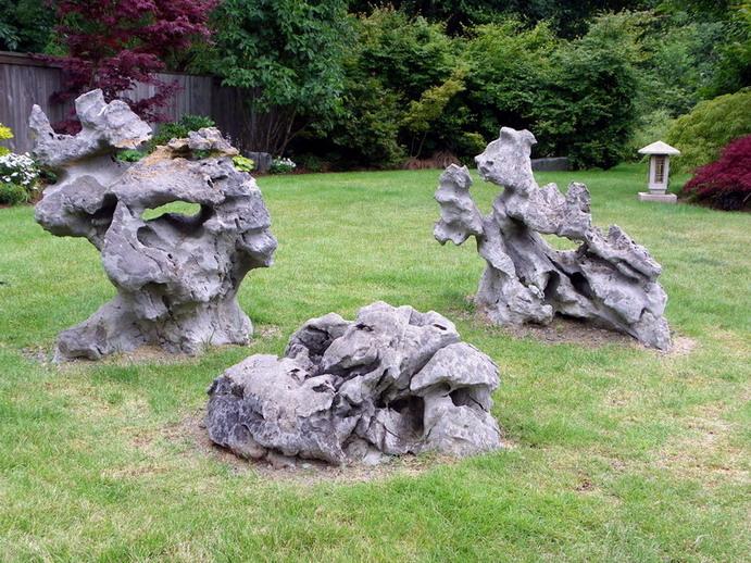 Peter Wilson's Garden Peter_16