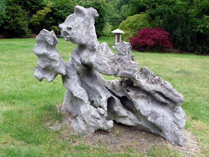 Peter Wilson's Garden Peter_18